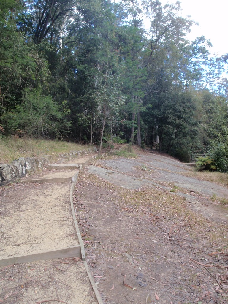 Track towards Boarding House Dam near Watagans Forest Rd in the Watagans