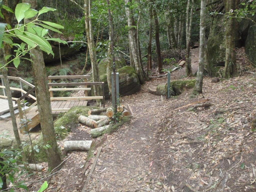 Timber bridge in the Watagans
