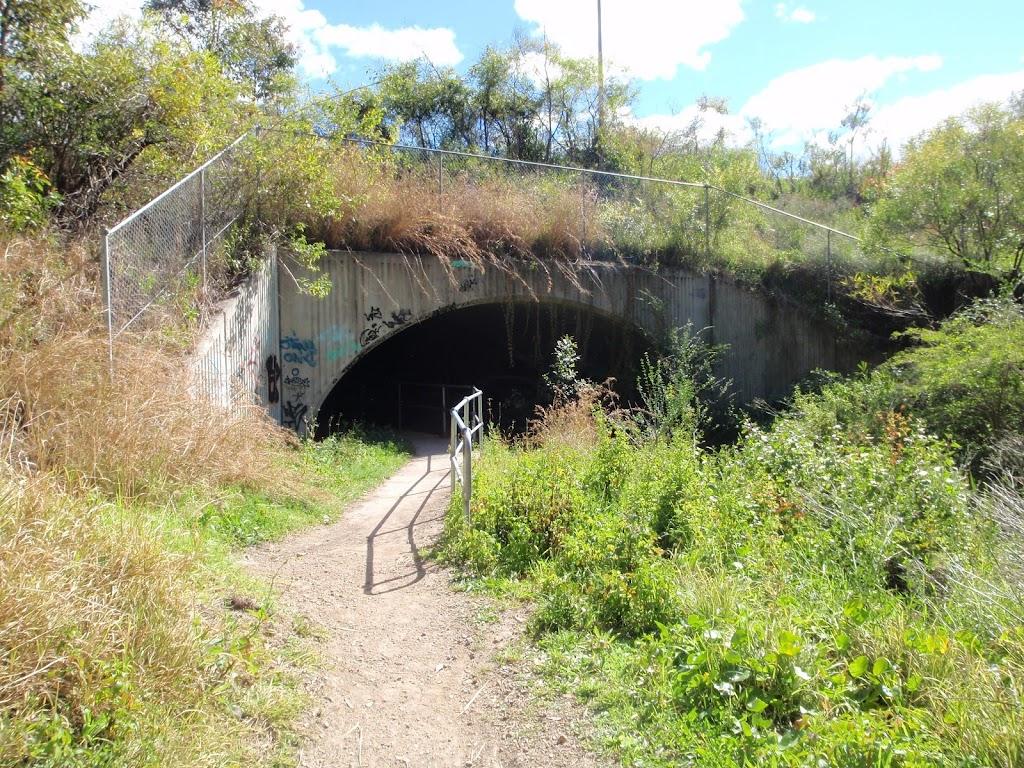 under the west Charlestown bypass