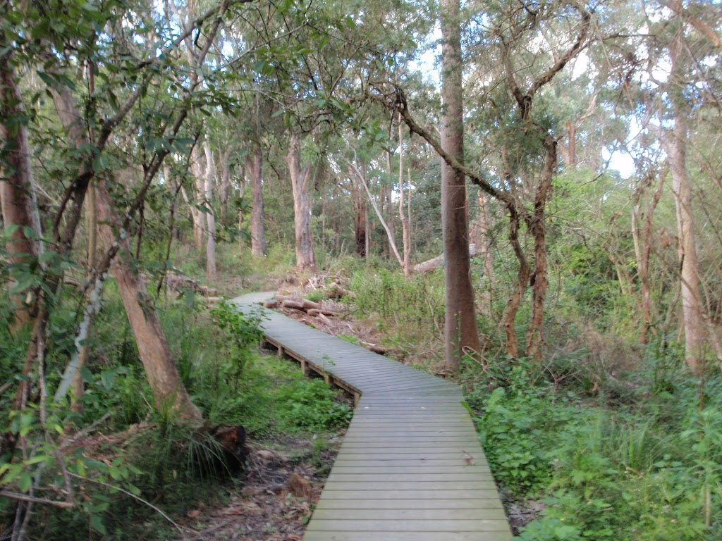 Boardwalk winding along Flaggy creek (66516)
