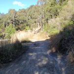 following the bushtrack to the Glenrock scout camp (66696)