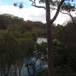 View of Lane Cove river