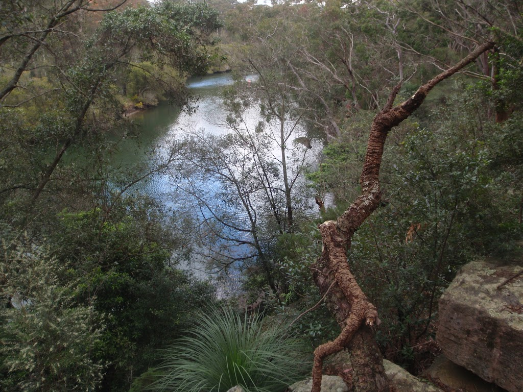 Lane Cove river from view point east of Fairyland