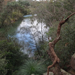 Lane Cove river from view point east of Fairyland (67257)