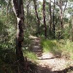 Great North walks Near Fairylands