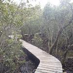 following the boardwalk