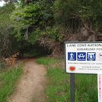 Track south of Magdala Park