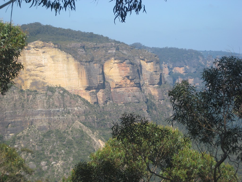 Katoomba Cliffs from Botting's Lookout