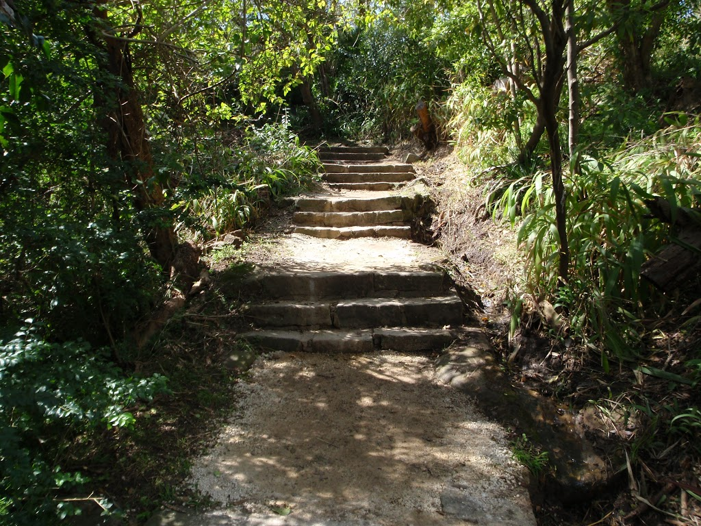 Steps Near Athol Hall