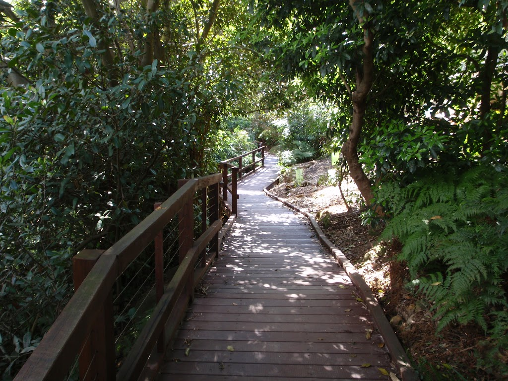 Track between Little Sirius Cove and Taronga Zoo