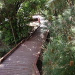 Boardwalk to Camp Curlew (69922)