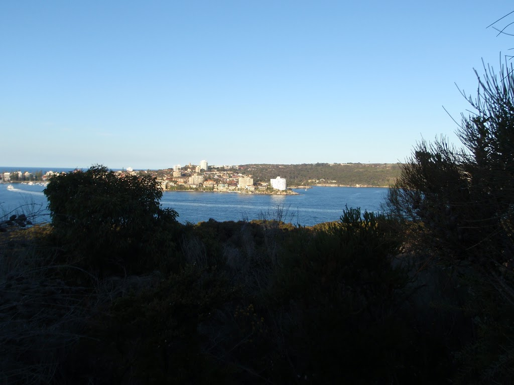 View of Manly from Dobroyd Head