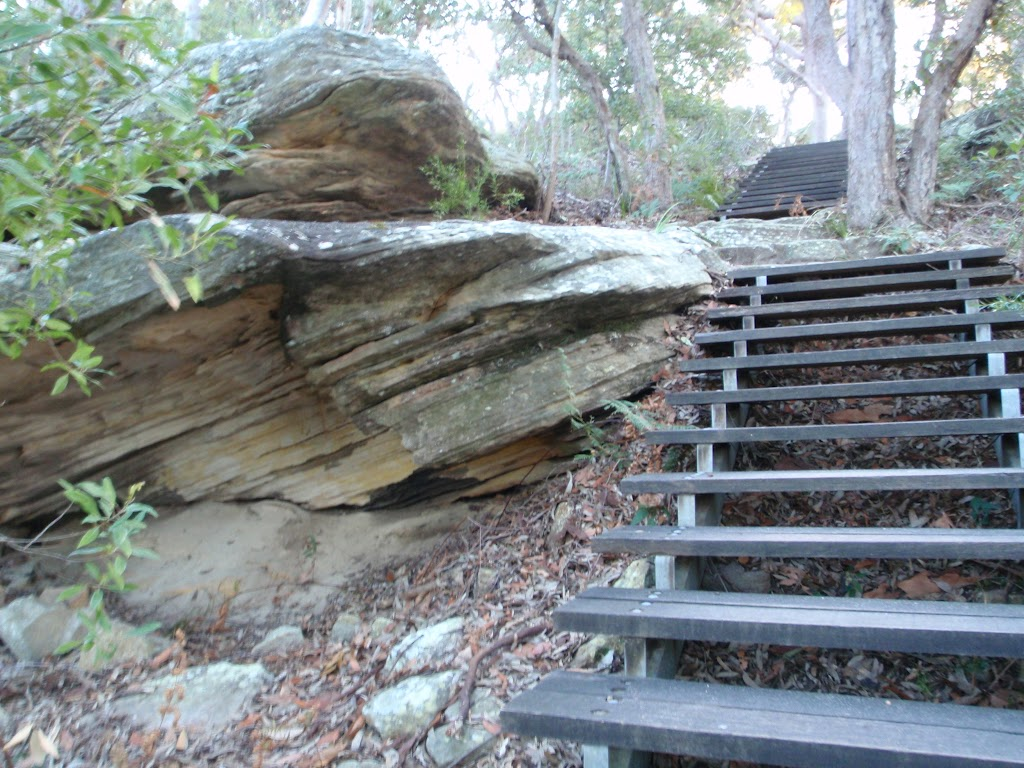 Stairs up to Tania Park