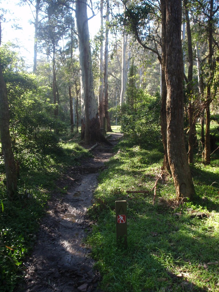 Track just north of Berowra Valley Bushland Park (70672)