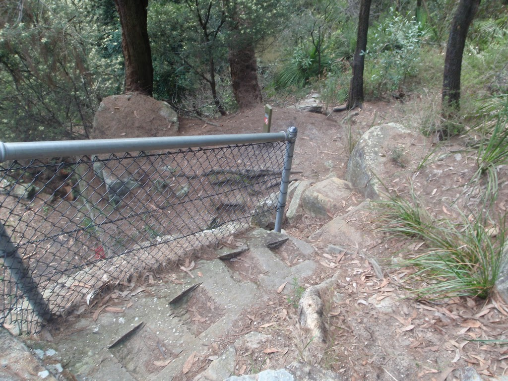 steps down into Galston Gorge