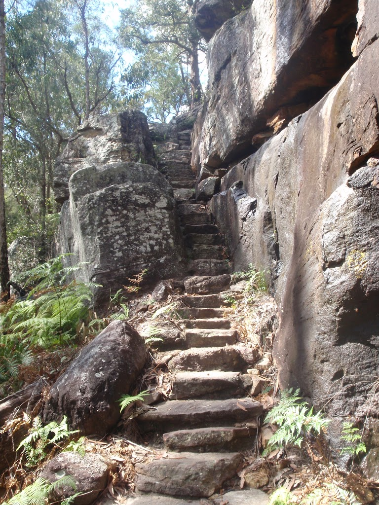 Climbing down into Galston Gorge (71086)