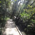 crosslands boardwalk (71335)