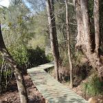 short sections of boardwalk (71371)