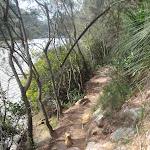 following berowra creek