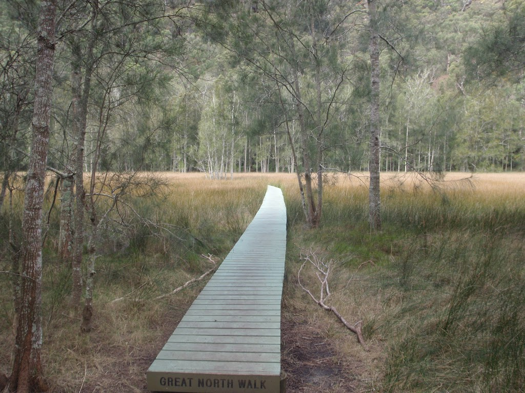 Great North Walk boardwalk (71461)