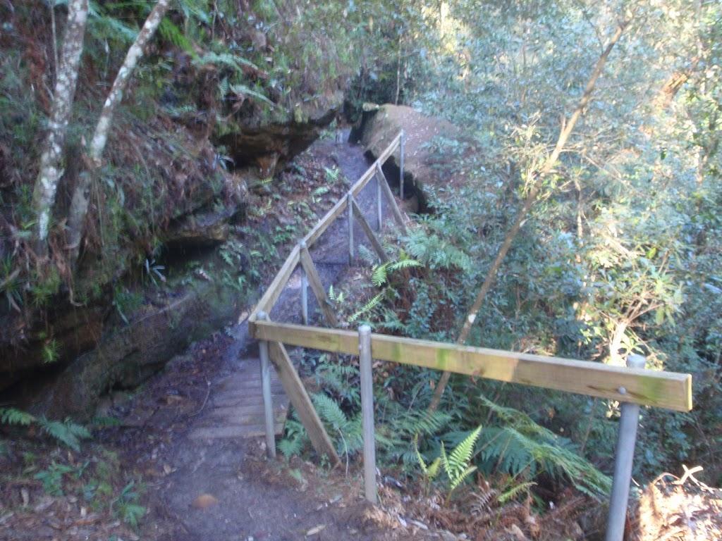 Mt Kuring Gai link track