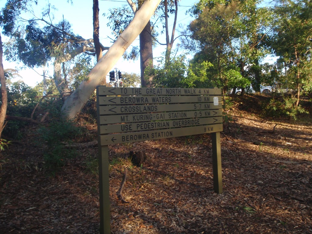 Sign at Mt Ku-ring-gai track head (71929)