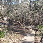 Path down from Berowra