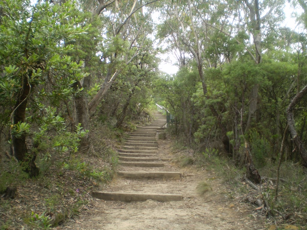 Stairs into Valley of the Waters from Conservation Hut