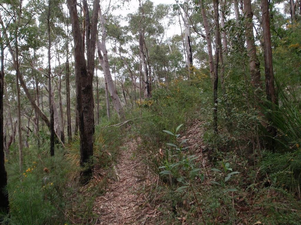 Track through bush to Plateau Pde