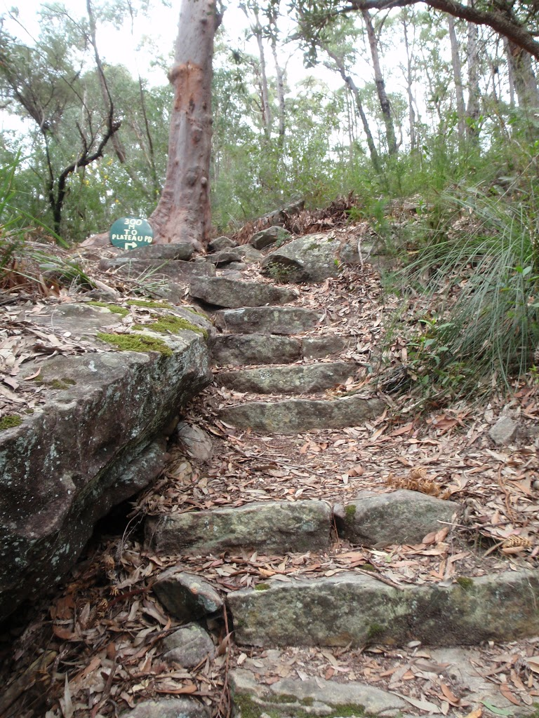 Rock steps from Plateau Pde (73518)