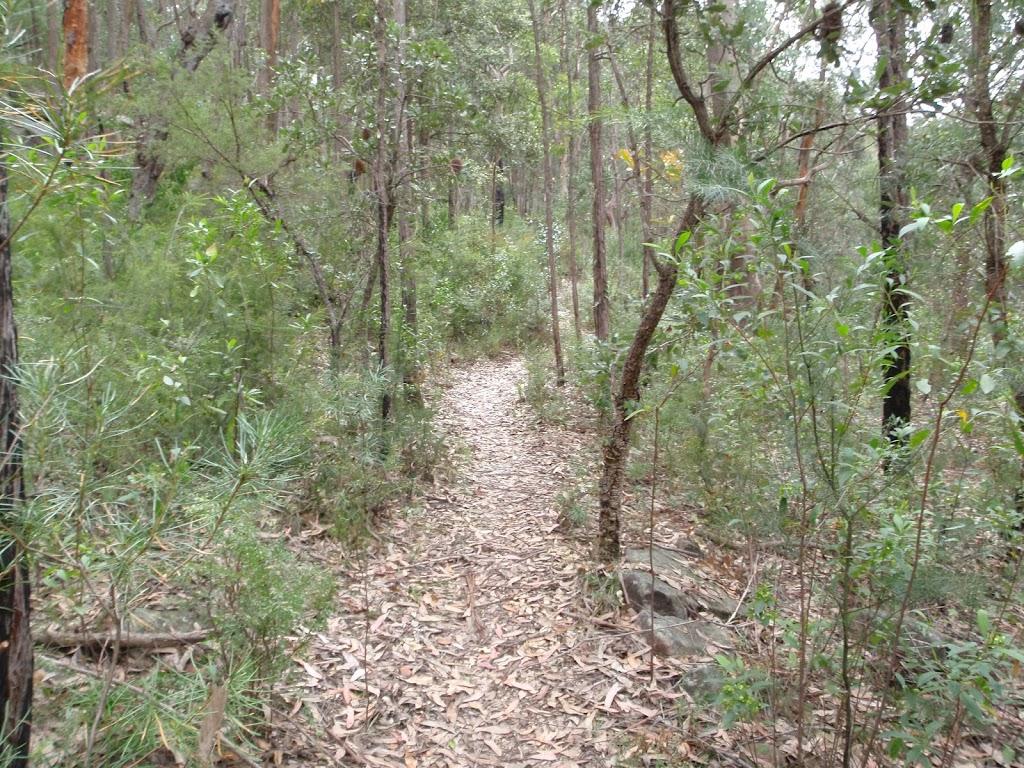 Track through heath below Plateau Pde