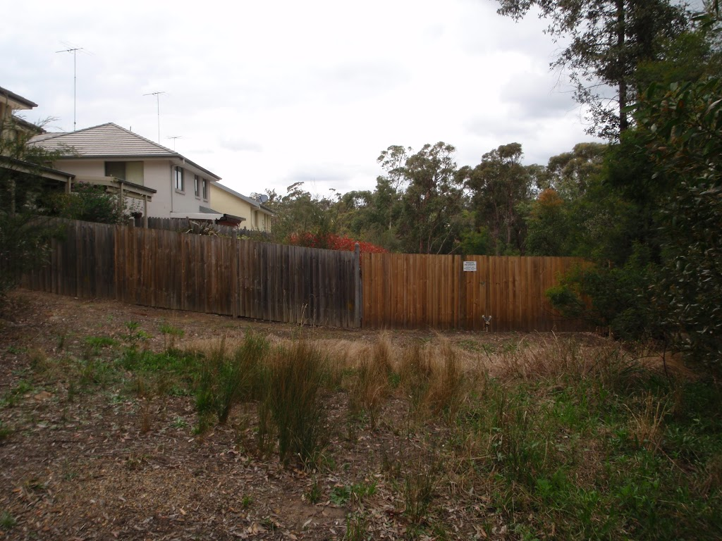 Fence line below Blaxland Library car park (73743)