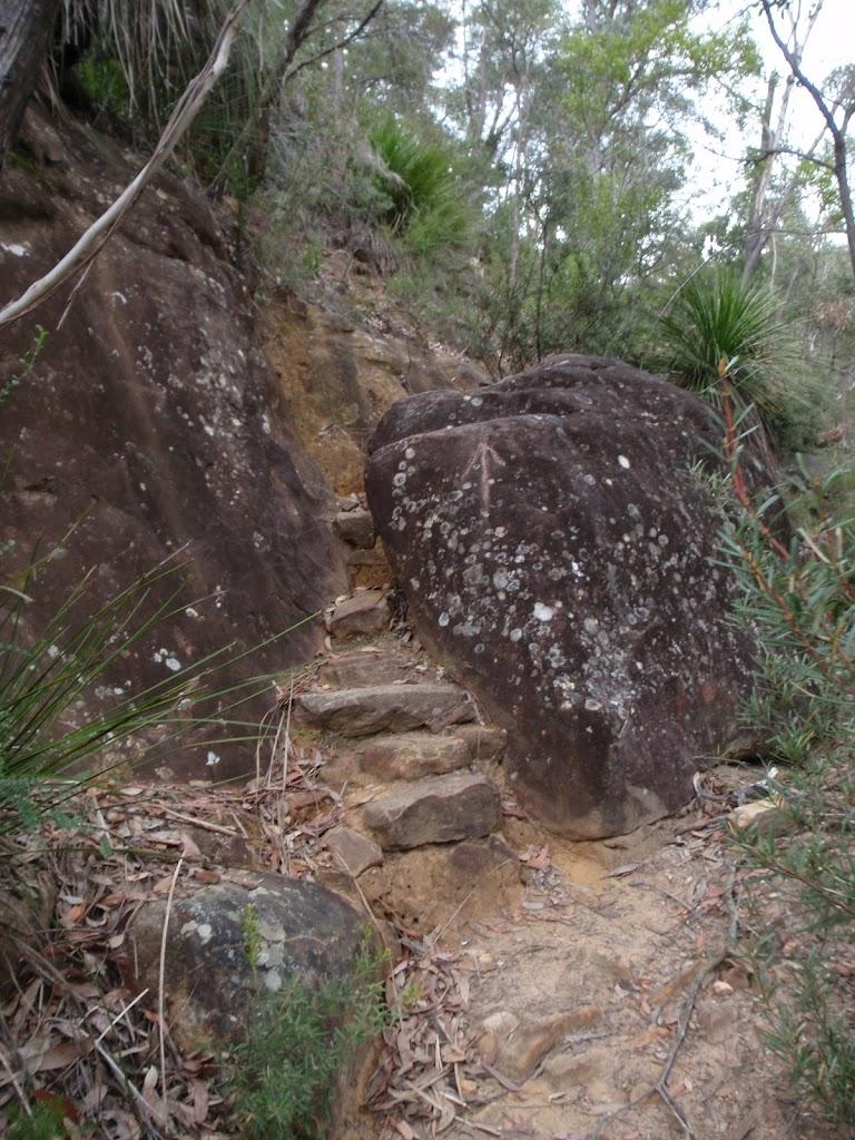 track between rocks