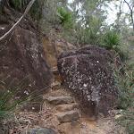 track between rocks (73773)