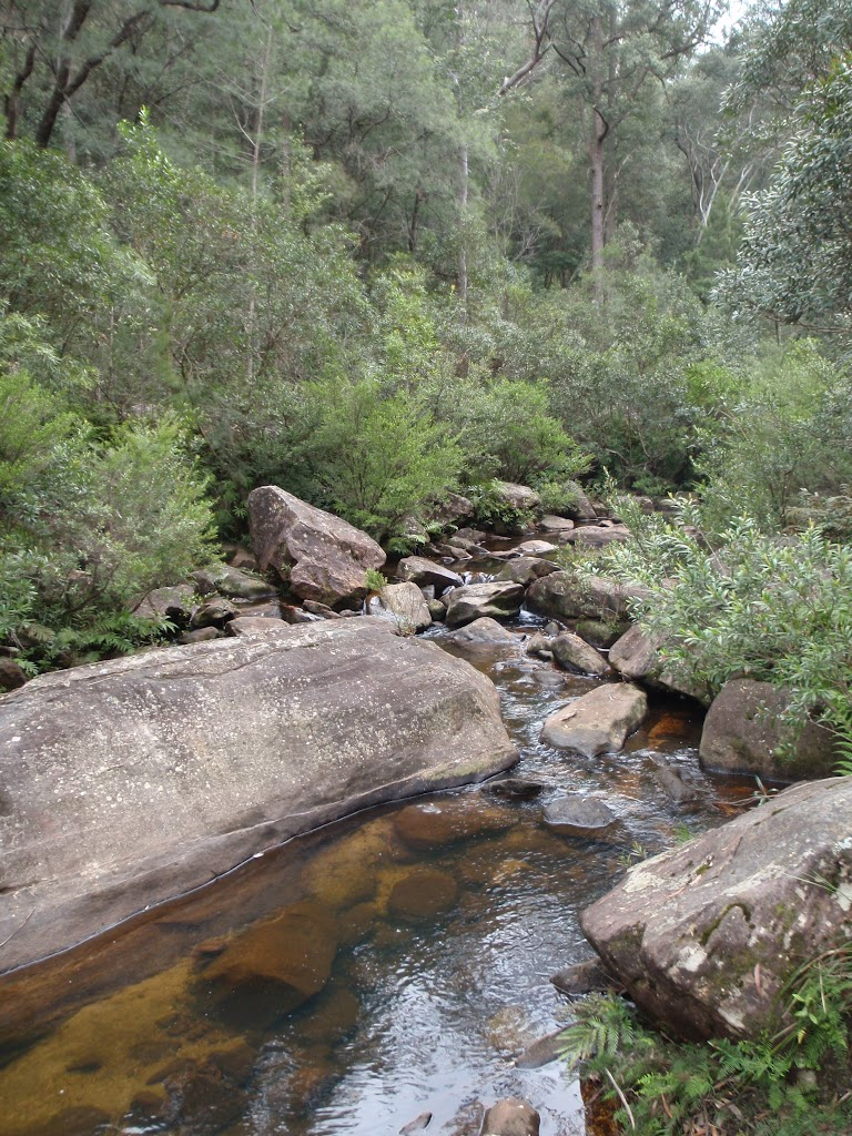 View when crossing Glenbrook Ck (73794)