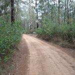The Oaks Fire Trail (73938)