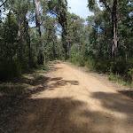 The Oaks Fire Trail (73962)