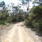 The Oaks Fire Trail (74034)