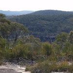 Lookout along The Oaks Fire Trail (74151)