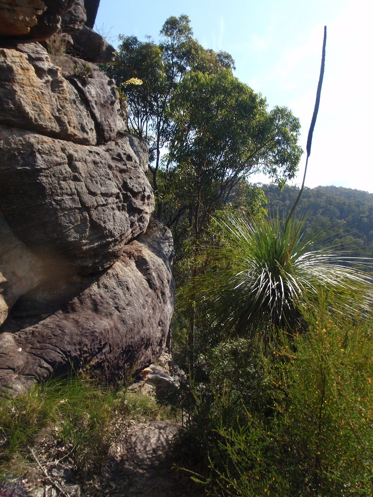 Rocky outcrop below Buniyah Lookout