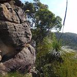Rocky outcrop below Buniyah Lookout (74301)