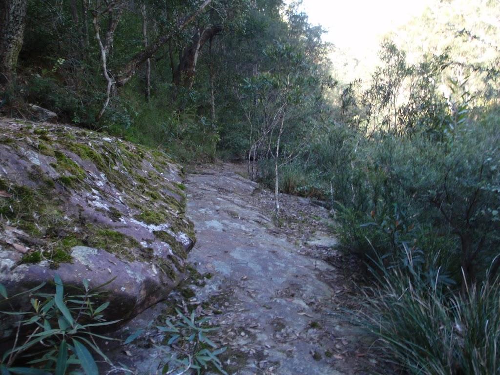 Track below Martins Lookout (74328)