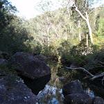Glenbrook Creek (74343)