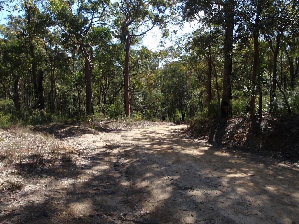 The Oaks Fire Trail