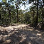The Oaks Fire Trail (74490)