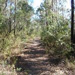 St Helena ridge track (74880)