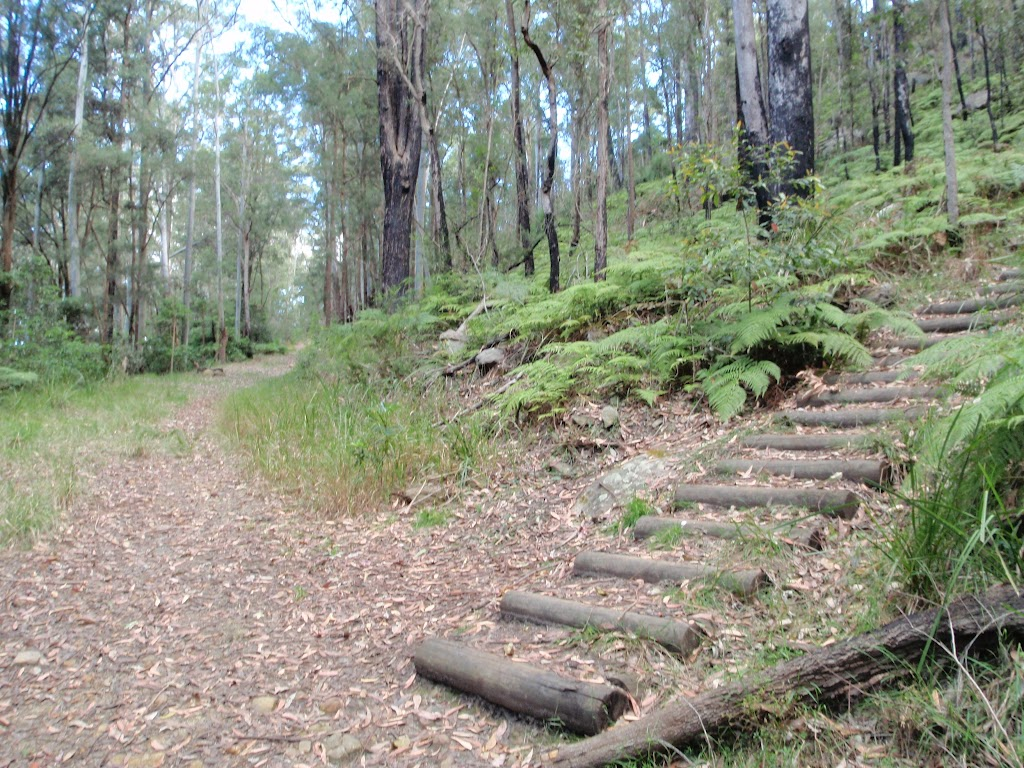 Intersection with steps on concreted trail (75210)