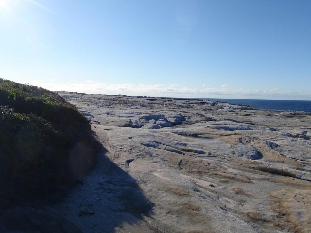 Rock Platform on Cape Baily
