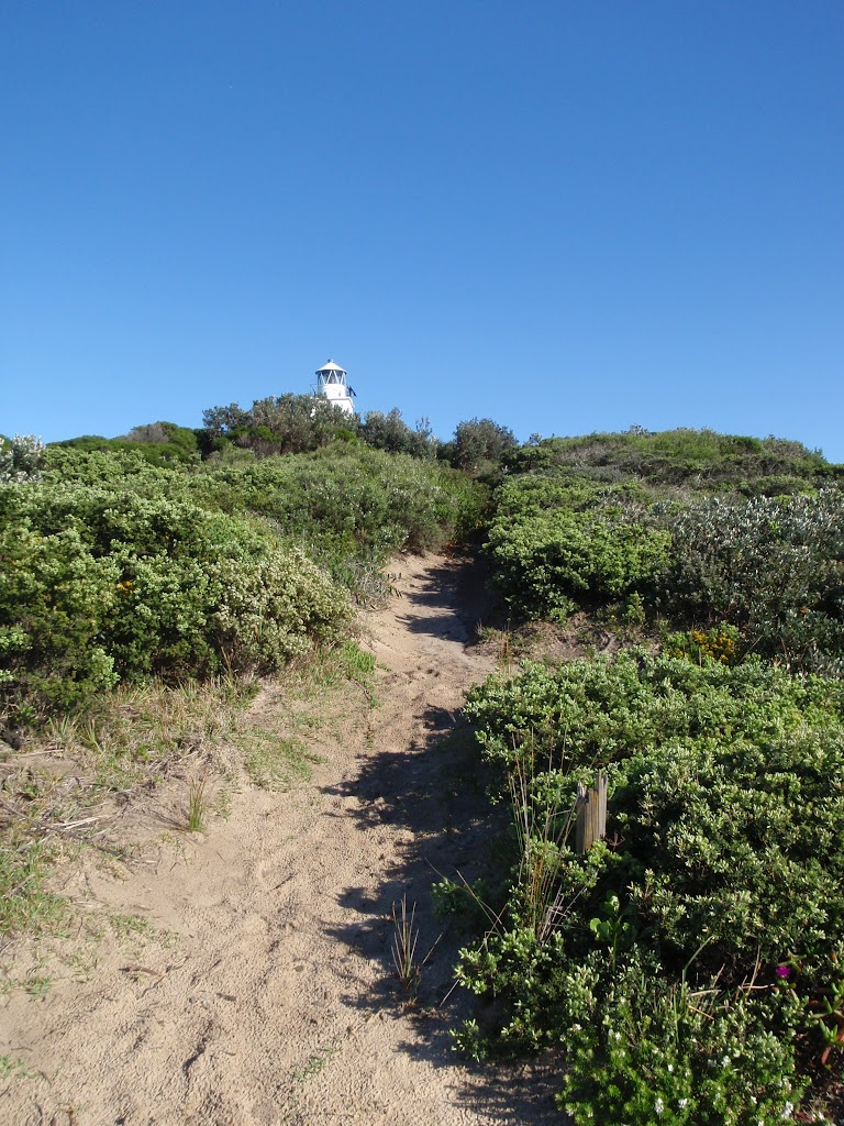 path up to the cape bailey lighthouse
