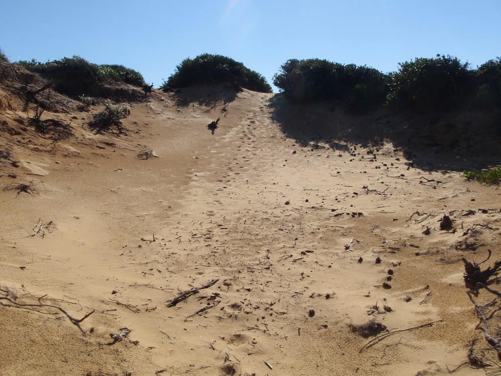 small sand dunes that litter the cape bailey walk